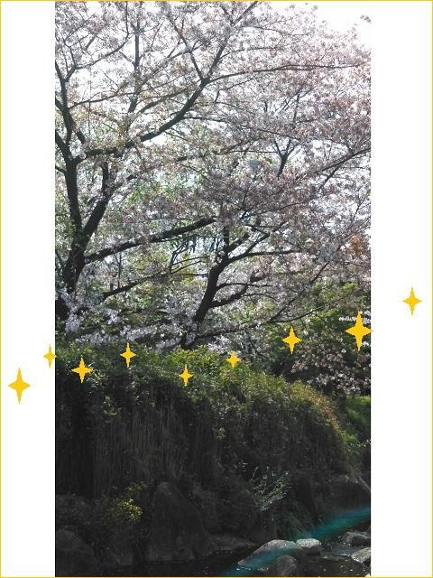 サンラフレ豊中2021年4月2週目⑧.jpg