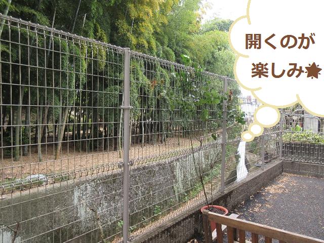 LP戸坂2021年5月1週目②-⑥.png