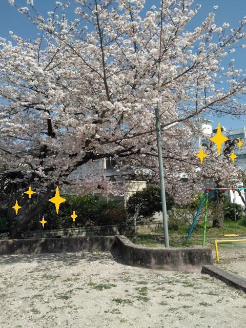徳庵2021年5月24日②-①.jpg