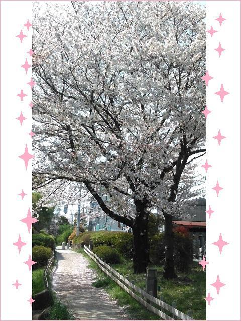 サンラフレ豊中2021年4月2週目①.jpg